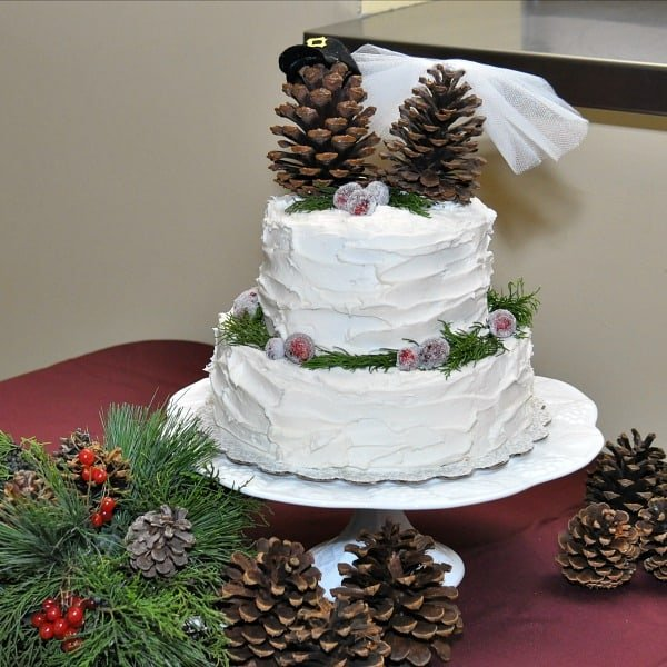 white wedding cake with sugared cranberries and pinecones