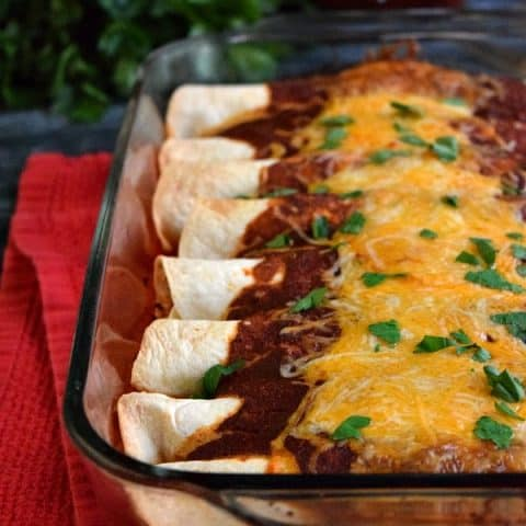 front view of leftover chicken enchiladas lined up in dish