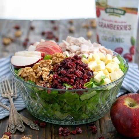 A bowl of Apple Cranberry Salad with Turkey and Apple Cider Vinaigrette