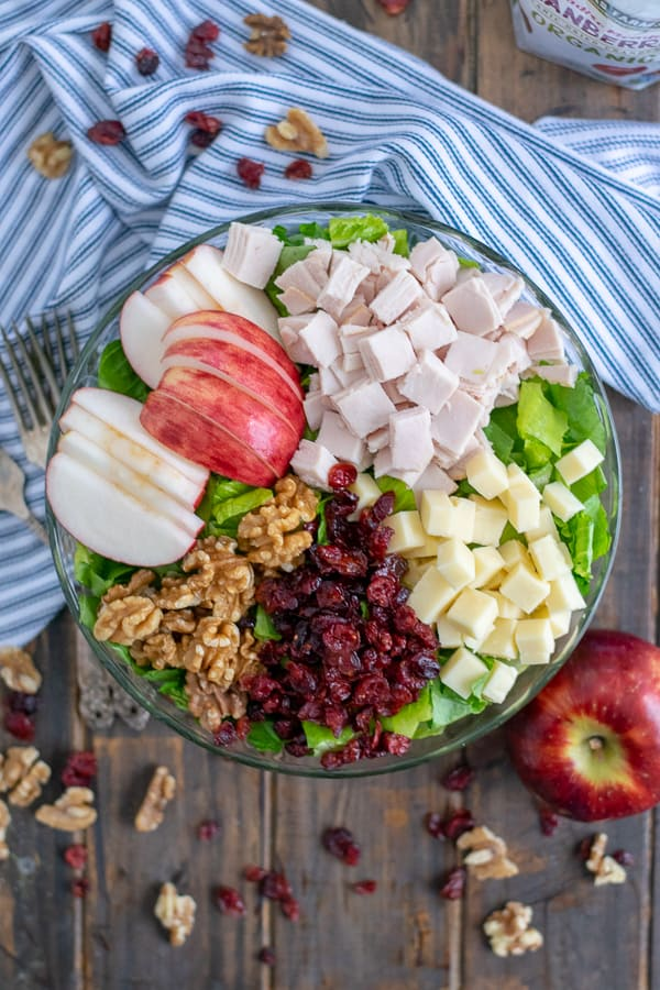 An overhead view of the Apple Cranberry Salad with Turkey and Apple Cider Vinaigrette
