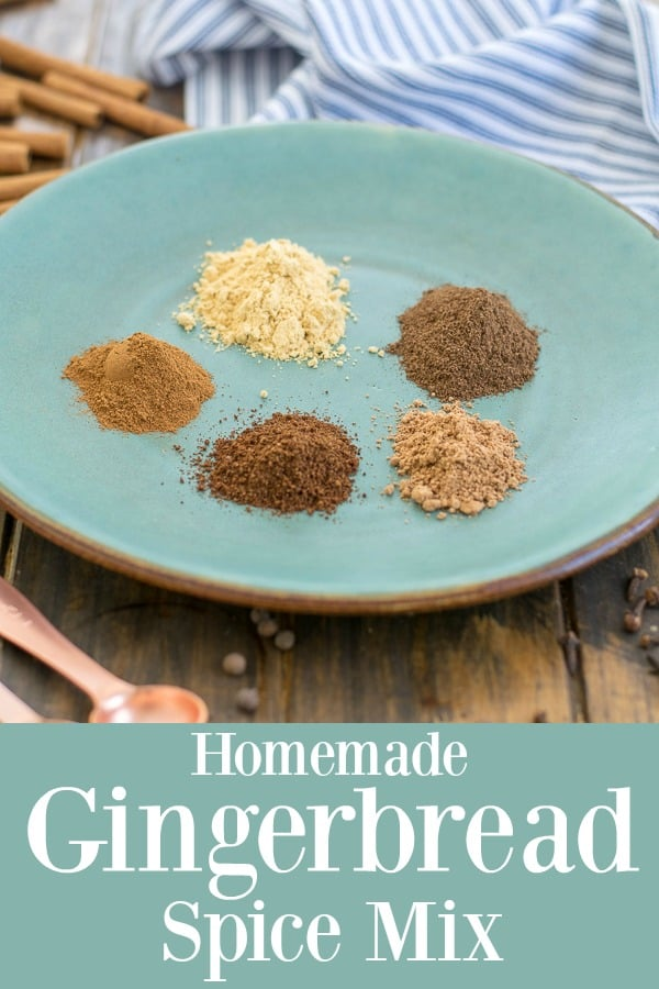 5 ingredient homemade gingerbread spice mix