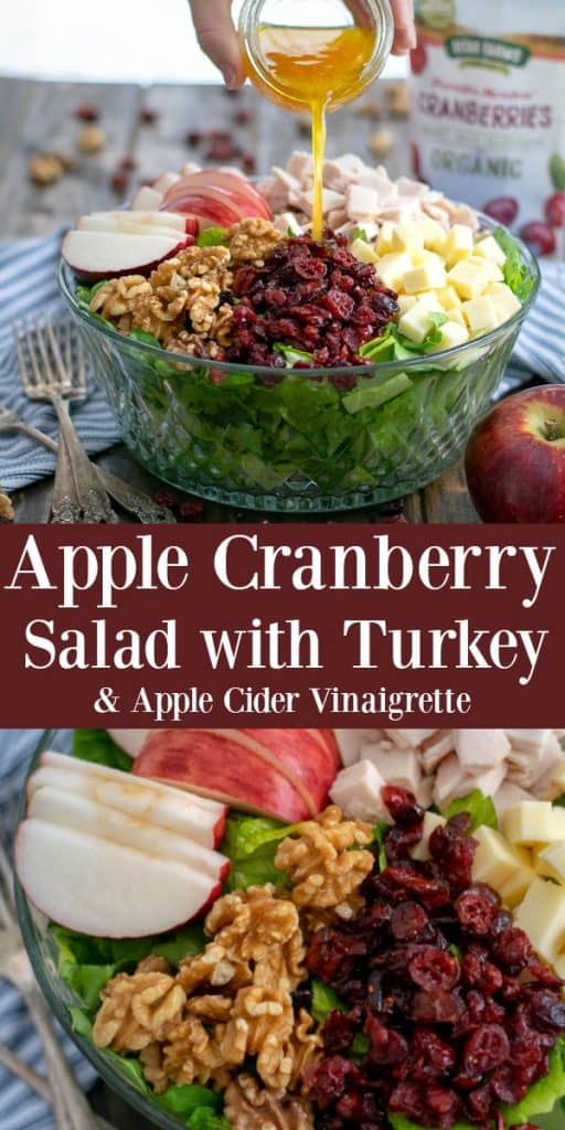 Apple Cranberry Salad with Turkey and a Healthy Apple Cider Vinaigrette