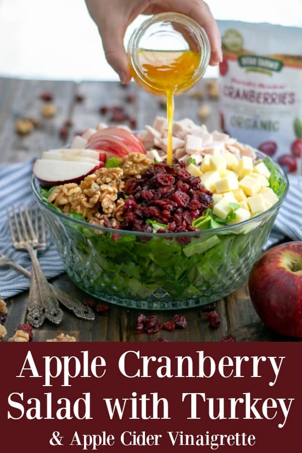 Apple Cranberry Salad with Turkey and a simple Apple Cranberry Vinaigrette