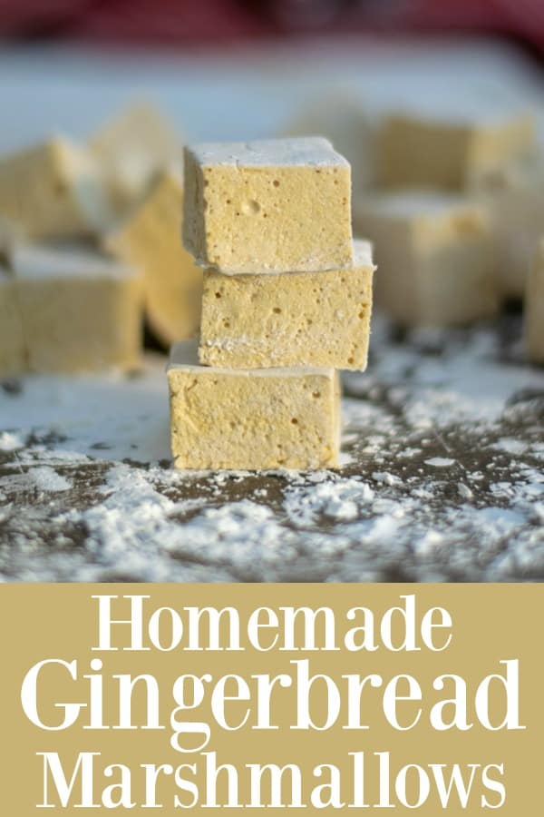 delicious & easy Homemade Gingerbread Marshmallows