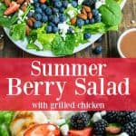 a spinach salad full of three different kinds of berries and a grilled chicken