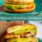 avocado breakfast sandwich cut open being held by a pair of hands