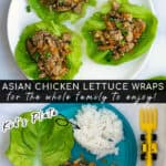 adult and kid plate showing the chicken lettuce wraps served