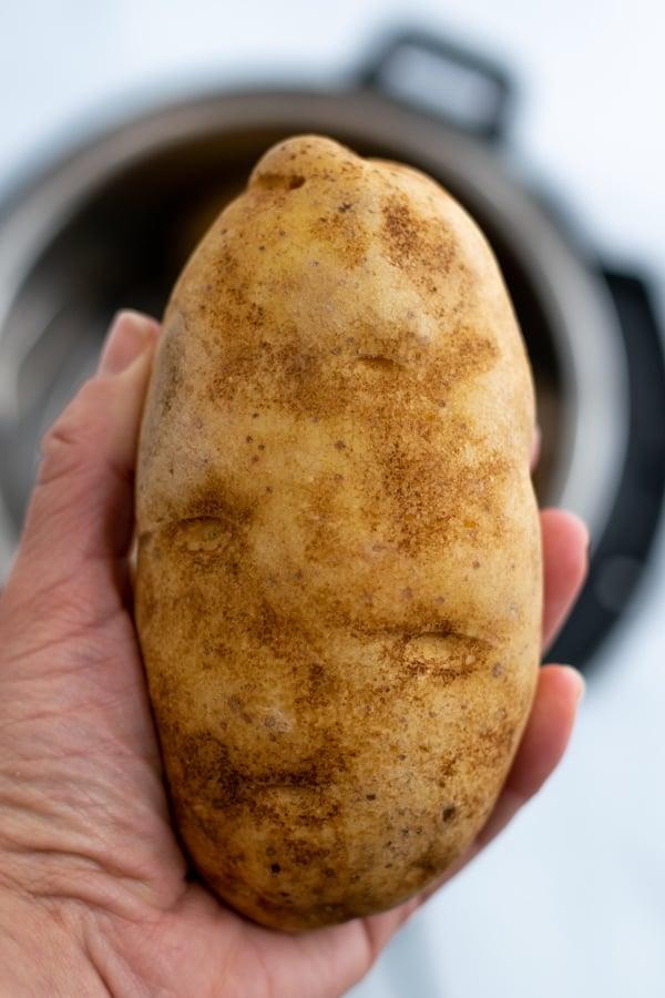 average size russet potato in women's hand