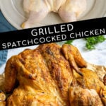 Pinterest Pin with text 'Grilled Spatchcock Chicken', image of golden brown grilled chicken on a cutting board.
